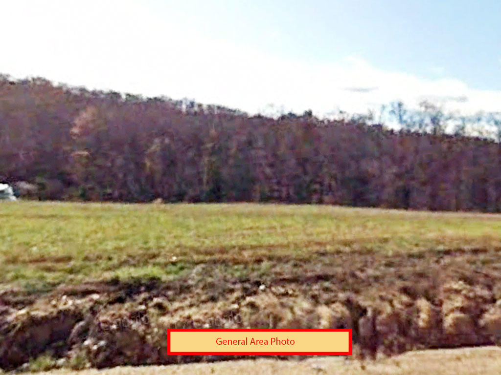Over a quarter of an acre close to the water - Image 0