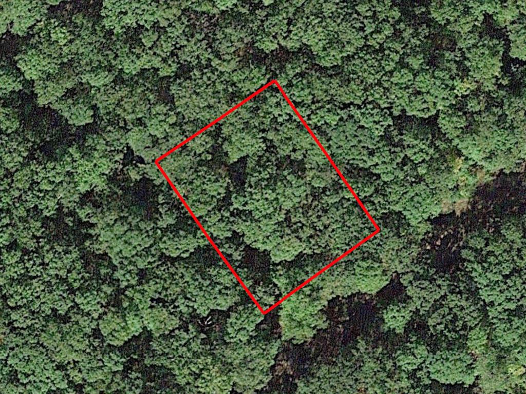 Tree Covered Missouri Oasis - Image 1