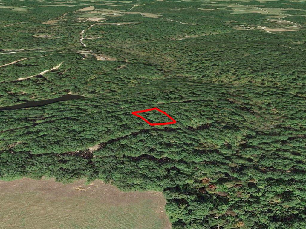 Tree Covered Missouri Oasis - Image 2
