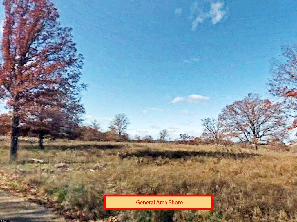 Tree Covered Missouri Oasis - Image 3