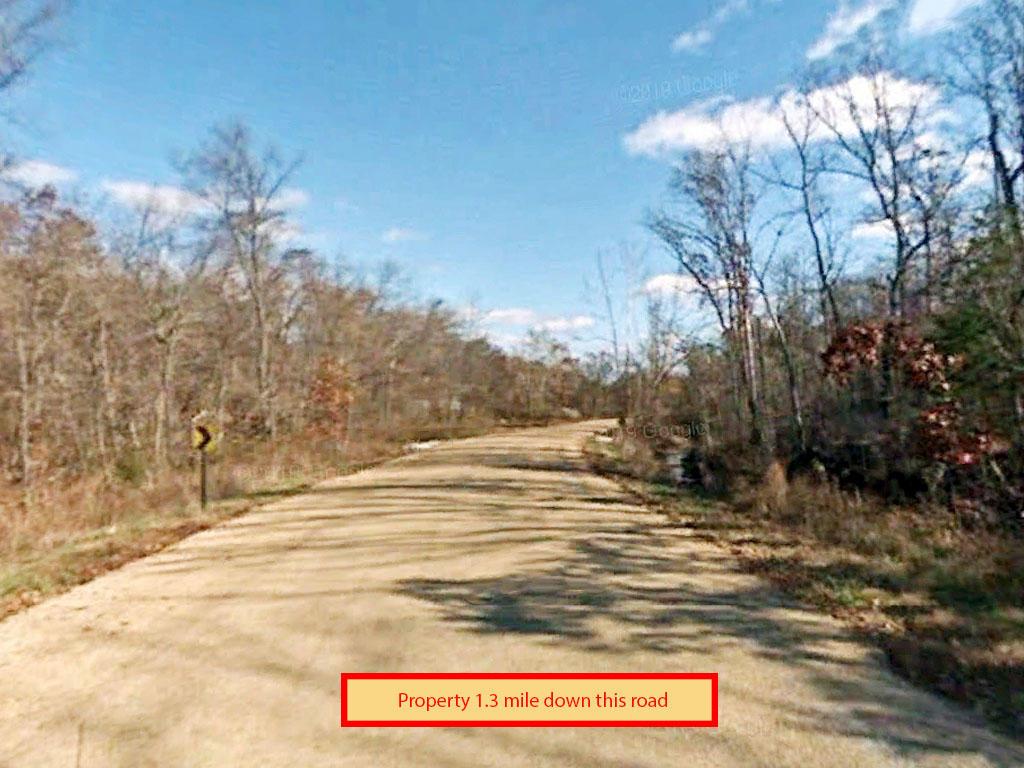 Tree Covered Missouri Oasis - Image 4