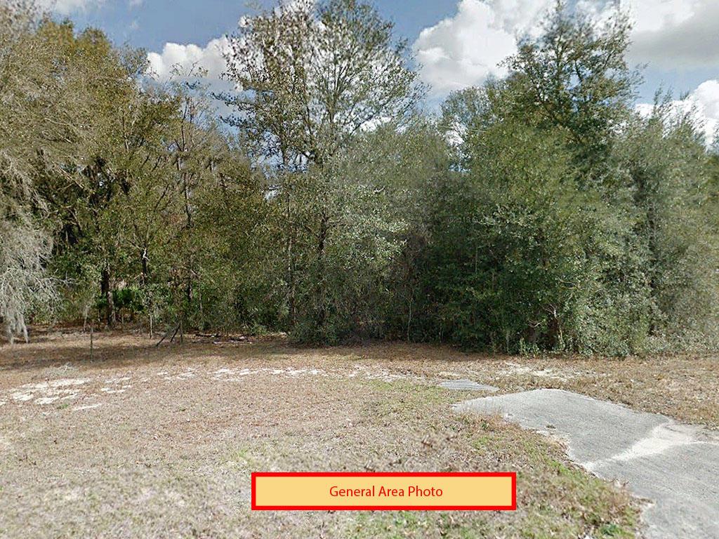 0.35-Acre Interlachen Corner Residential Plot - Image 3