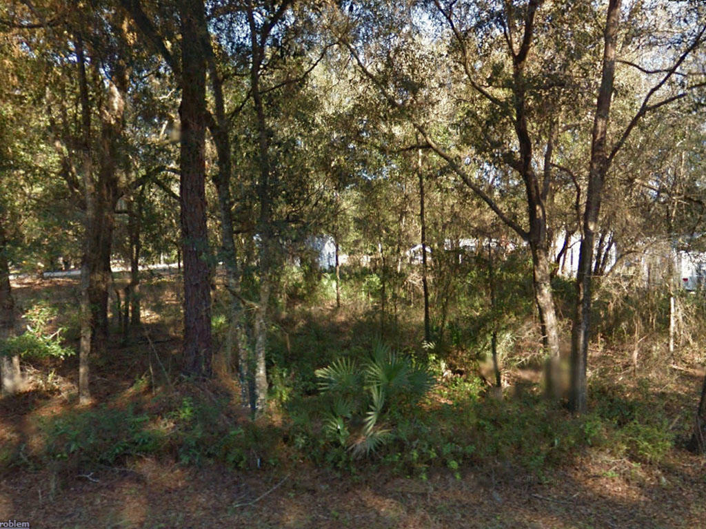 A quarter an acre close to the lake - Image 3