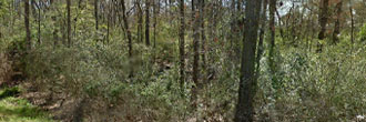 Rare Two Lots Sold as One Near Lake Myriad