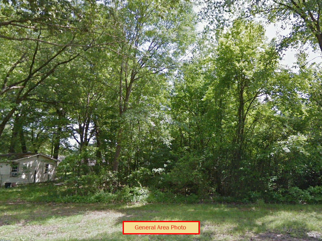 Undeveloped Raw Property in Abundant Arkansas Wilderness - Image 3