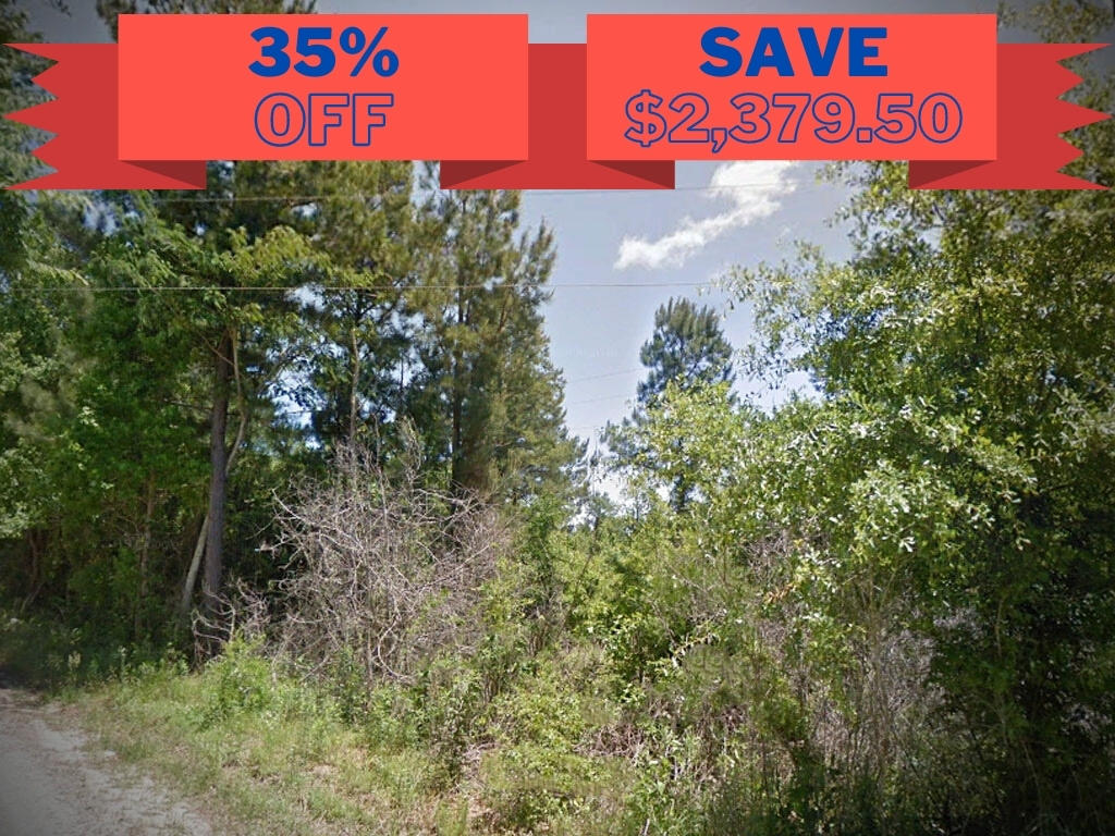 Spacious 1 Acre Lot in Affordable Area - Image 0