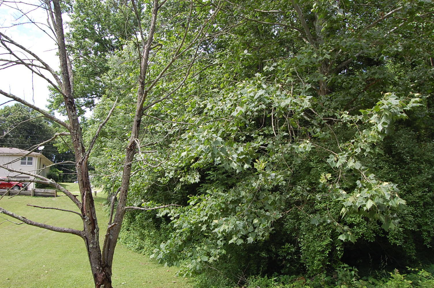 One Acre Property in Picturesque Vernon Indiana - Image 0