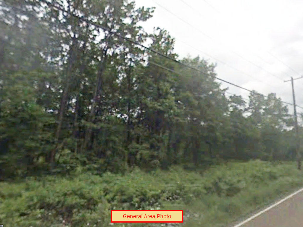 Beautiful 1.25 Acre Tree Covered Lot at the End of A Cul-de-sac - Image 0