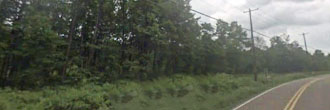 Beautiful 1.25 Acre Tree Covered Lot at the End of A Cul-de-sac