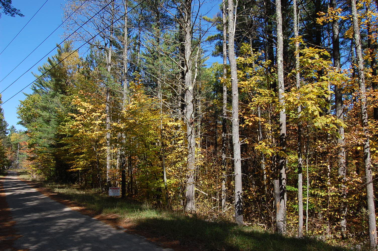 Your wooded getaway in Upper New York State - Image 0