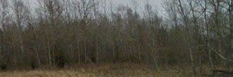 Minnesota Commercial Acreage Along Highway 73