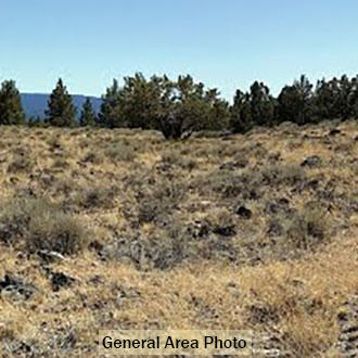 1+ Acre Private Getaway in Beautiful Klamath County Oregon - Image 1