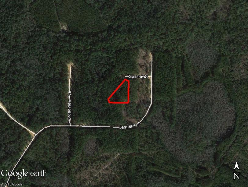 1+ acre Private Woodland on the panhandle West of Tallahassee. - Image 3