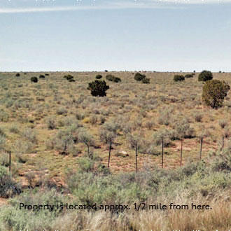 1 Acre Back-Country Dream an Hour from Flagstaff - Image 2