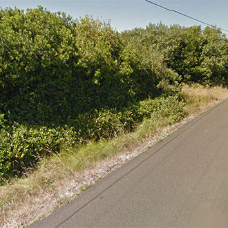 Stunning Neighborhood Lot Less than a Mile from the Beach - Image 3
