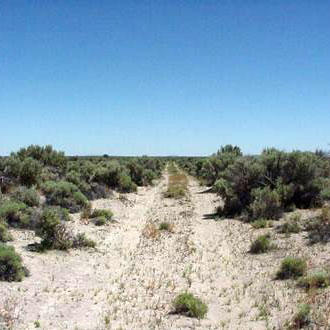 20 Acre Retreat 20 Minutes from Christmas Valley - Image 1