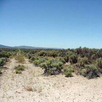 20 Acre Retreat 20 Minutes from Christmas Valley - Image 0