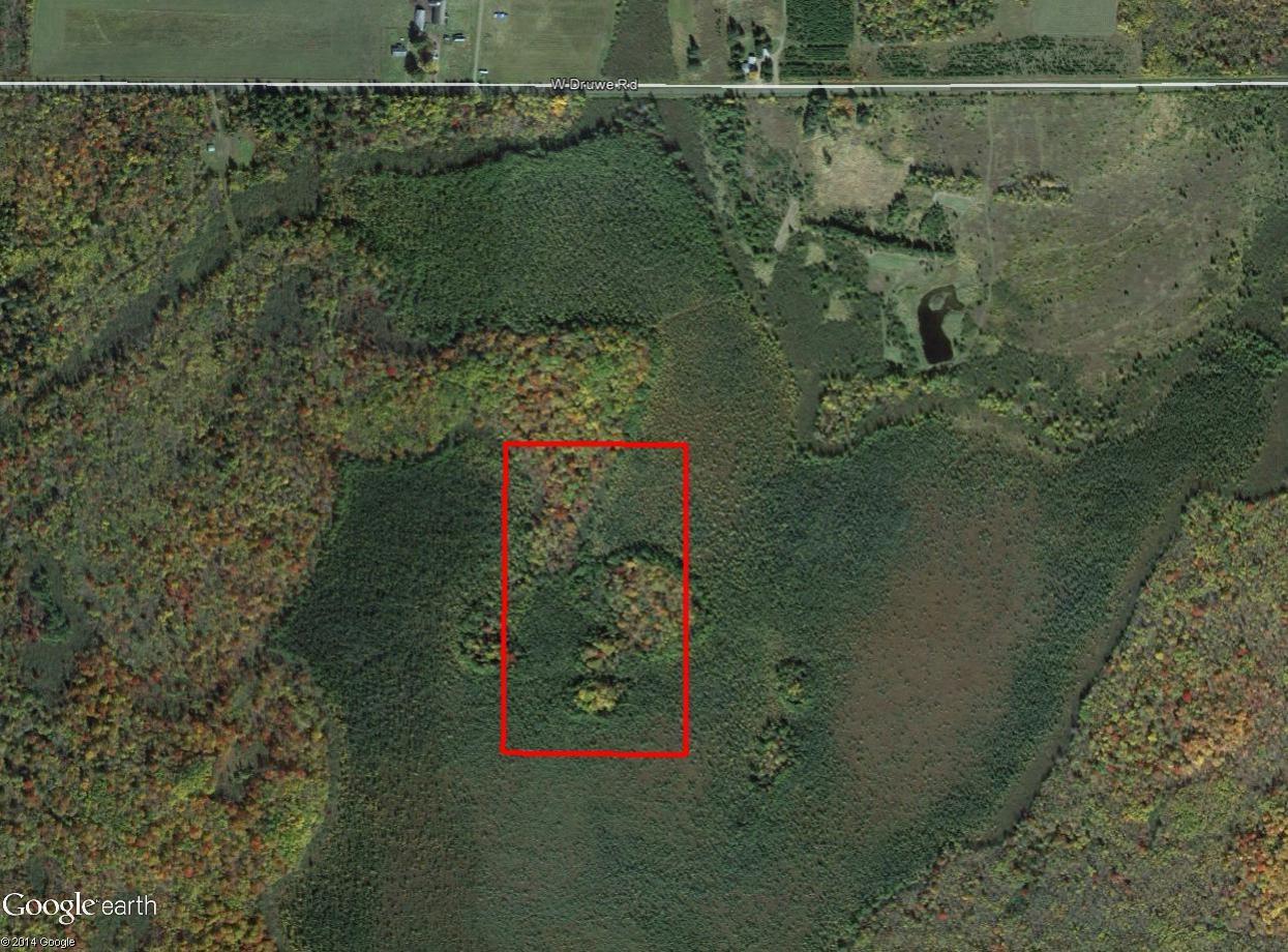 Wisconsin Timberland Near White Birch Lake - Image 1