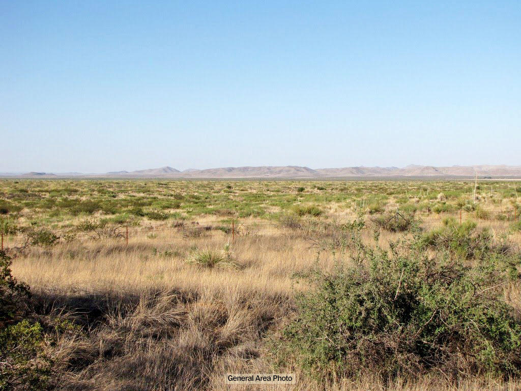 Large West Texas Acreage in Rural Area - Image 2