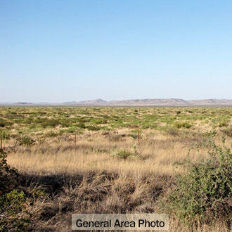 Large West Texas Acreage in Rural Area - Image 1