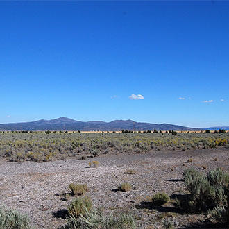 20 Acre Farm Property 20 Minutes from Madeline - Image 1