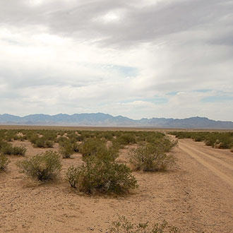 Off-the-Grid Acreage between Kingman and Las Vegas - Image 2