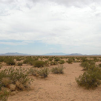 Off-the-Grid Acreage between Kingman and Las Vegas - Image 4