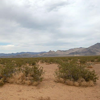 Off-the-Grid Acreage between Kingman and Las Vegas - Image 0