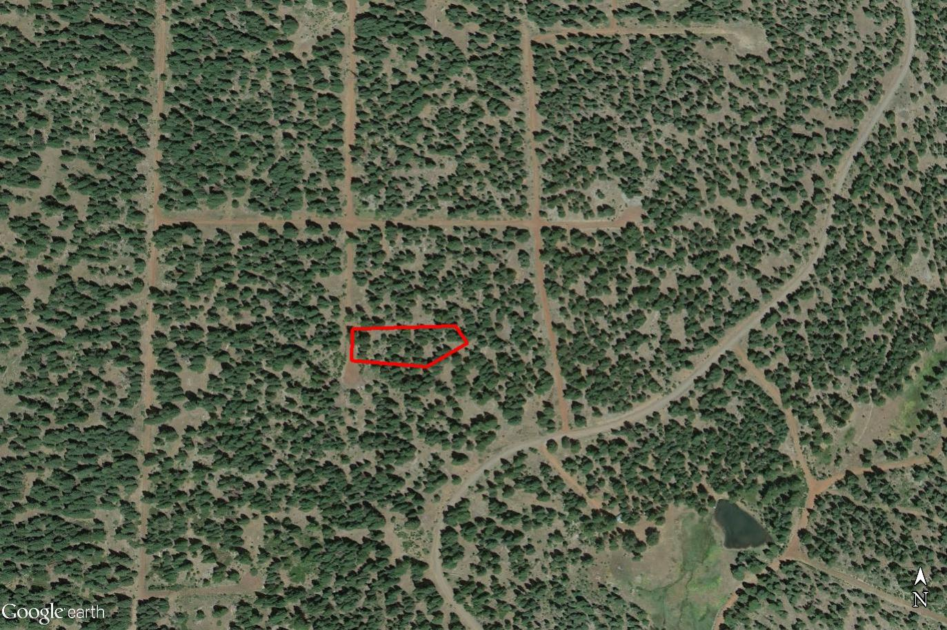 1+ Acre Sanctuary in the Wooded Hills Southwest of Alturas - Image 2