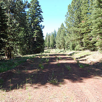 Peaceful 1+ Acre Haven about 90 minutes from Alturas - Image 1