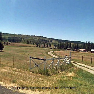 5+ Acre Forested Land 40 Minutes West of Spokane - Image 0