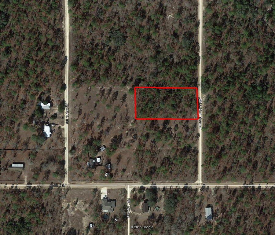 1.25 Acre Property About 45 Minutes SW of Gainesville - Image 2