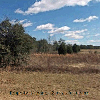 Florida Half-Acre Triangle of Land off Paved Road. - Image 1