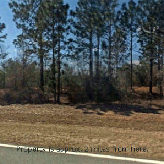 Florida Half-Acre Triangle of Land off Paved Road. - Image 2