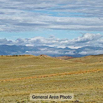 5 Acres Southeast of Fairplay Colorado - Image 0