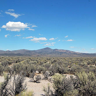 10 Acres for Hunting or Agriculture in Outdoor-Lover's Paradise - Image 4