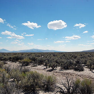 10 Acres for Hunting or Agriculture in Outdoor-Lover's Paradise - Image 1