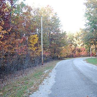 Beautiful Tennessee Wooded Property Near Saint George Lake - Image 1