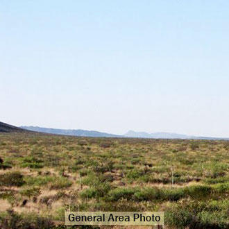 West Texas 50 Acres Four Miles North of Interstate 10 - Image 0