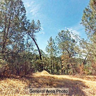3+ Acre Residential Lot in Northern California - Image 1