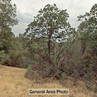 3+ Acre Residential Lot in Northern California - Image 3