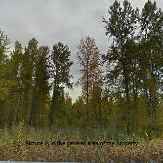 Half Acre Marvel in Northern Alaskan Timberland - Image 0