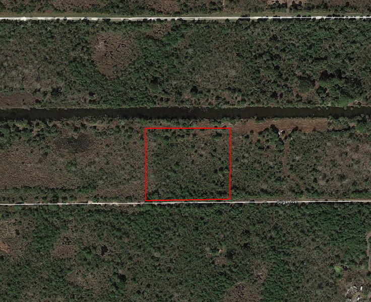 2+ Acre Florida Escape Less than 8 Miles from the Beach - Image 1