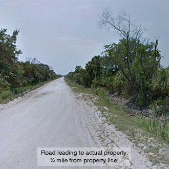 2+ Acre Florida Escape Less than 8 Miles from the Beach - Image 2
