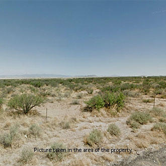 1 1/4 Acre Refuge Less than 10 Minutes from Cochise, Arizona - Image 1
