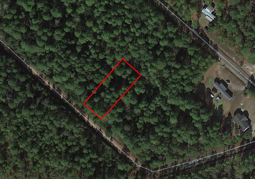 Large Wooded Lot Less than a Mile from Patricia Lake - Image 2