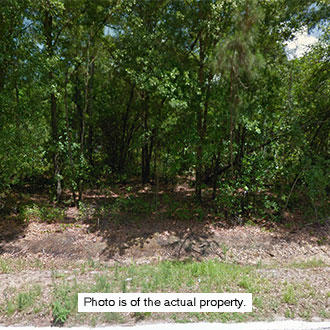 Over Three-Quarters of an Acre Only an Hour from Tampa, Florida - Image 0