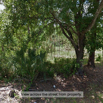 Over Three-Quarters of an Acre Only an Hour from Tampa, Florida - Image 2