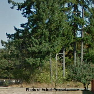 Residential Getaway in Nice Napavine Neighborhood - Image 0