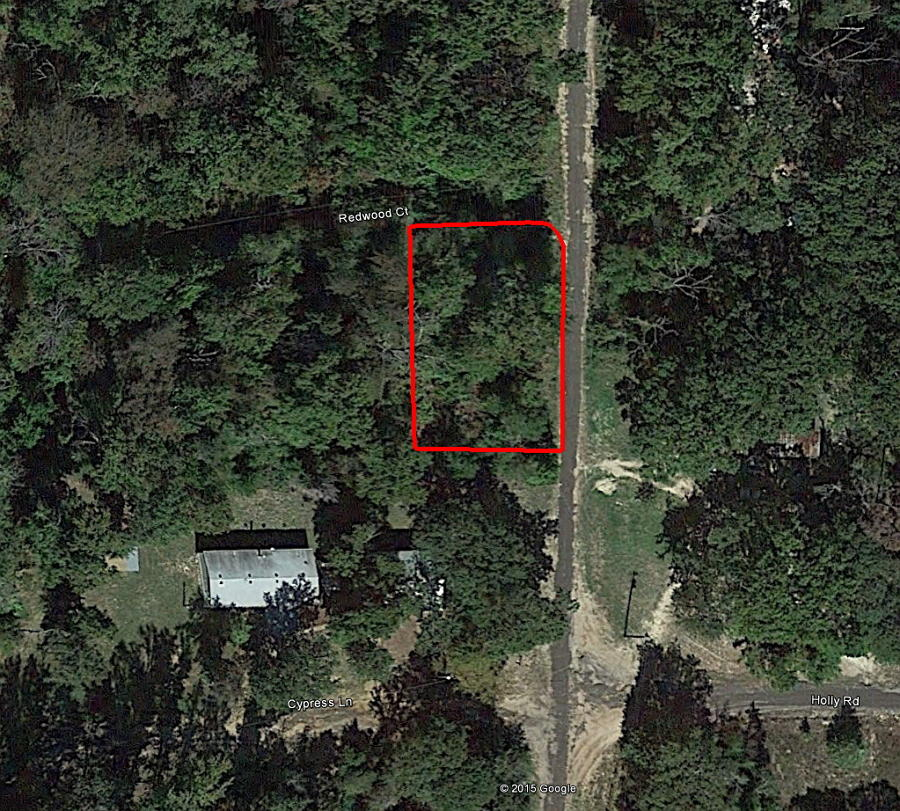 Enjoy a Wooded Property with Power and Water Available - Image 2